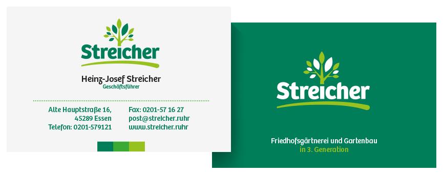 Vis_streicher